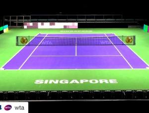 Risultato Kvitova-Radwanska finale LIVE Singapore 2015
