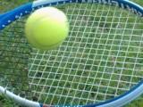 Risultati Wta s-Hertogenbosch Nottingham 15-16-17 giugno 2018 Tabelloni tennis tornei di singolare femminile LIVE Tempo Reale. In Olanda 1° titolo da professionista per la Krunic. In Inghilterra trionfa la Barty