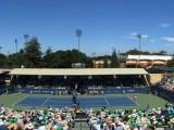 Risultati Tabellone Wta Stanford 20-21-22-23-24 luglio 2016 LIVE Tennis. Venus Williams-Konta finale in tempo reale. Punteggio in diretta online / Primo trionfo in carriera per la britannica. Venus ko