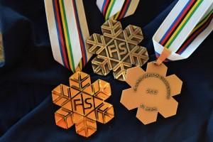 Mondiali Sci alpino: albo d'oro Italia / Vincitori e vincitrici