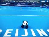 Risultati Atp Pechino 2-3 ottobre 2017 Tabellone LIVE Tennis Tempo Reale Beijing Cina torneo di singolare maschile. Ecco tutti i punteggi di 1° turno