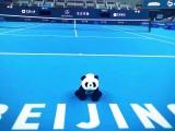 Diretta online risultati Atp Pechino 2017  (Photo archive struttura campo centrale Beijing: credits to www.twitter.com/ChinaOpen )