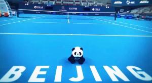 Risultati Atp Pechino 4-5 ottobre 2017 Tabellone LIVE