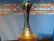 DIRETTA ONLINE FIFA CLUB WORLD CUP, EMIRATI ARABI UNITI DICEMBRE 2017. (Foto trofeo: credits to https://www.facebook.com/fifaclubworldcup/?fref=ts )