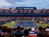 Risultati Atp Washington agosto 2018 Citi Open torneo tennis di singolare maschile / Il tedesco Alex Zverev si conferma campione. Ecco tutti i punteggi e l' albo d'oro dal 1969 ad oggi