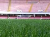 Testi Sentenze Appello Juve-Napoli e Verona-Roma 10 novembre 2020: rigettati oggi, dalla Corte della FIGC, i ricorsi dei partenopei e dei capitolini contro i risultati di 0-3 subiti a tavolino in 1° grado di giudizio nelle scorse settimane
